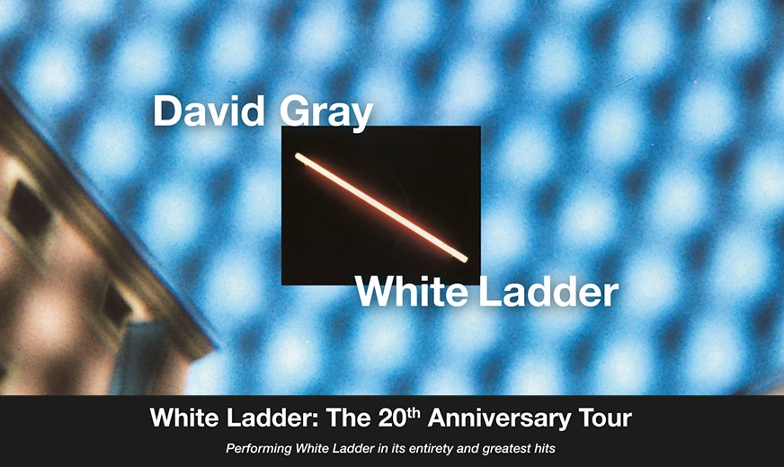 More Info for David Gray